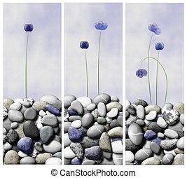 flores, Contar