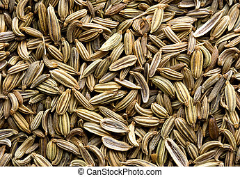 Fennel Seed Background - Abstract of fennel seeds showing...