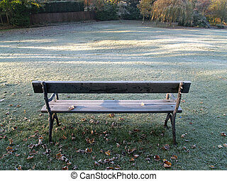 Frosty Morning - Frosty morning,park bench