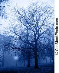 001, nebbia