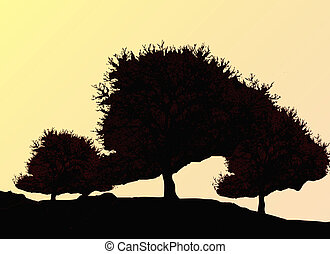 Silhouette of oak tree in autumn
