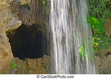 Cave and waterfall - Cave, waterfall and aquatic plant in...
