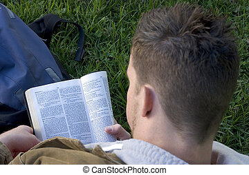 Reading Bible - Man reading bible