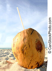 Coconut Beach Drink - Coconut with straw ready to drink