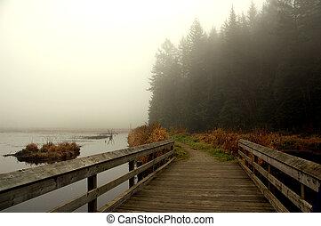 Bridge - Small bridge in park