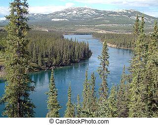 yukon river - Yukon river near Whitehorse,Yukon,Canada.