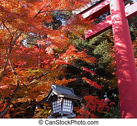Autumn temple gate - Beautiful autumn landscape with a...