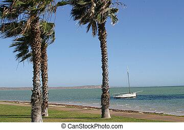 Lonley Boat - Lonley boat on the Western Australian coast...