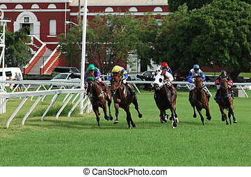 Horse Racing - Horse racing in Bridgetown, Barbados