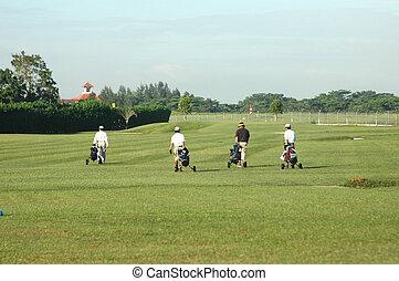4, golf, joueurs