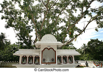 Bodh tree shrine - Buddhist shrine under a holy bodh tree at...