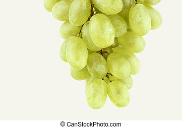wet sweet grapes