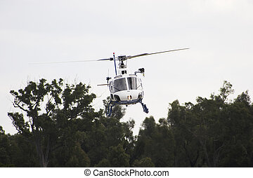 Squirrel Helicopter