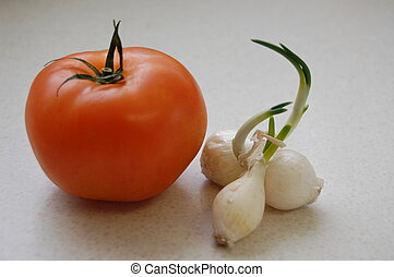 Tomato and Onion - A picture of a tomato and Onion