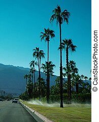 Palm Springs, CA - Sprinklers in Palm Springs, California