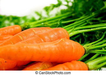 carrots - Buch of carrots isolated on white background