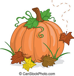 Fall pumpkin - Colorful illustration of a fall pumpkin