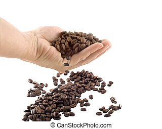 coffee beans 2 - isolated hand and coffee beans