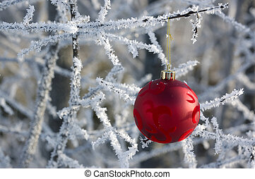 Frosty Christmas - Christmas Decoration Hanging Outside On A...