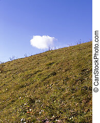 Sloping ground in autumn