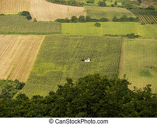 Fields of cereals and vineyards at Fruska Gora in Vojvodina...