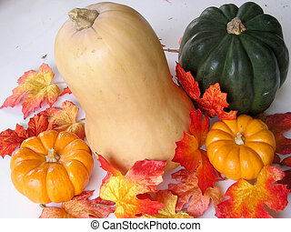 Autumn squash - Autumn leaves with acorn and butternut...