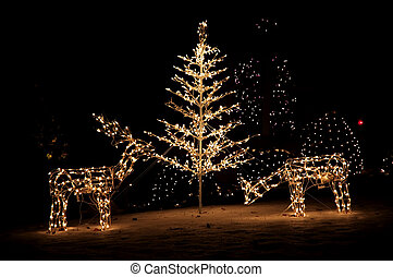 Christmas Yard Lights - Lighted reindeer and christmas tree...