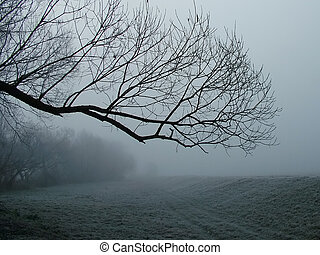 Riverside in the morning - The river side in a cold, foggy...