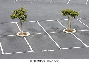 Empty parking lot. - Empty parking spaces await commuters.