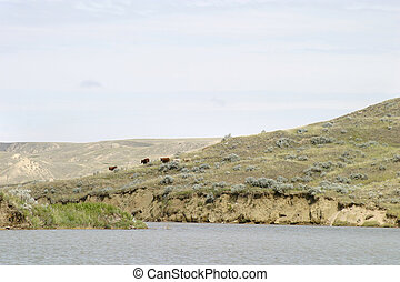 River Hills - South Saskatchewan River Hills, on Diefenbaker...