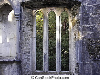gothic window at Muckross abbey county Kerry, Ireland