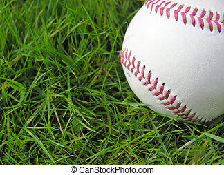 Baseball in grass - room for text