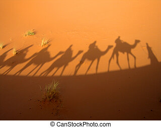 Shadow of caravan - Shadow of a caravan in the Sahara desert...