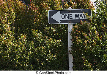 One Way Bush