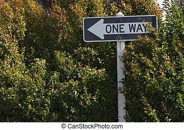 One Way Bush