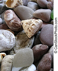 Stone and shells from sea - focus on first small stone in...