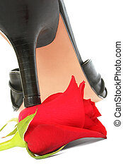 Stiletto and Rose - Black stiletto crushing red rose
