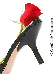 Stiletto and Rose - Stiletto heel and red rose