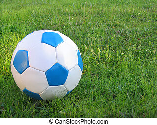 Soccer ball - Kids blue and white soccer ball on the yard...