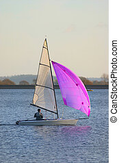 Mauve spinnaker - Small yacht with a mauve spinnaker