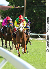 Horse Racing: On the - Horse racing in Barbados, West Indies...