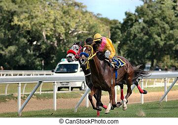 Horse Racing - Horse racing in Barbados, West Indies.