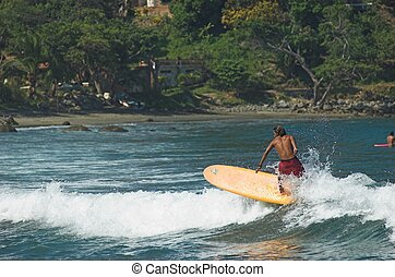 surfing sayulita - longboard surfer on top of wave in...