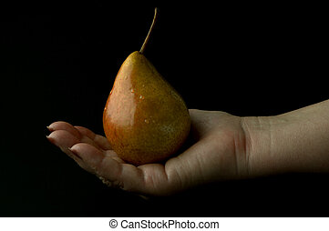 wet golden pear - wet pear on the hand
