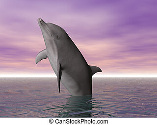 Breeching Dolphin - Dolphin jumping out of the sea