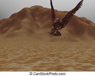 Desert Eagle Two - Eagle flying in the desert