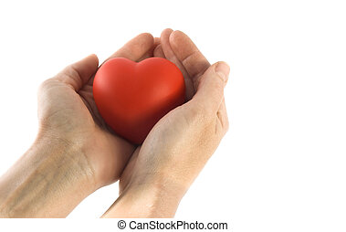 heart - isolated sponge heart and hands with room for copy...
