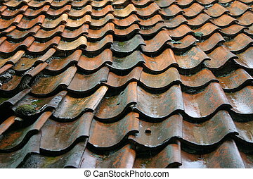 Roof with broken roof pans