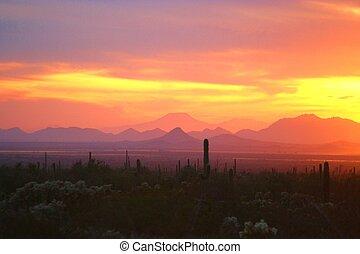 Arizona Sunset 1 - Sunset over the sonoran desert near...