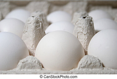 Eggs - Clsoe-up of eggs